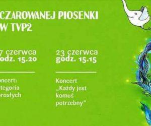 Koncerty telewizyjne Marek Grechuta